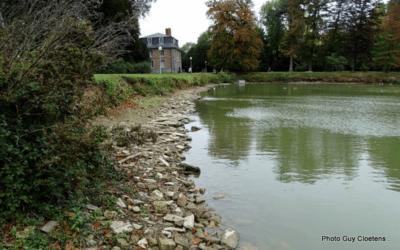 Manque d'eau dans les étangs du Parc